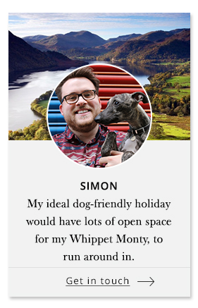 Simon - Pet Concierge