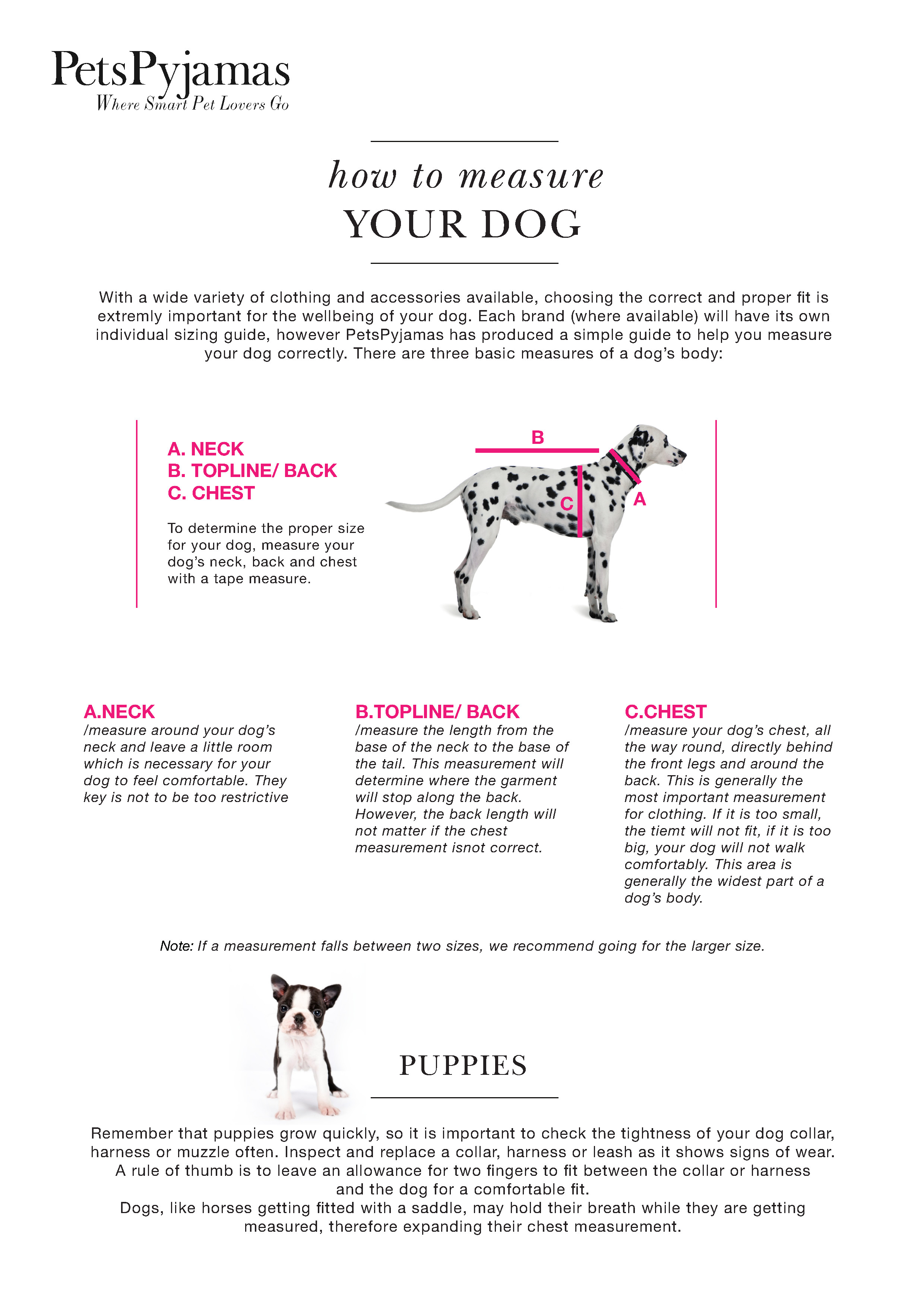 Before you buy a dog collar or harness, a brand new leash or a dog bed, please read our guide on how to measure your dog. PetsPyjamas.com has produced a simple guide to help you find the perfect fit. There are 3 basic measures of a dog's body: neck, back, chest (or girth).
