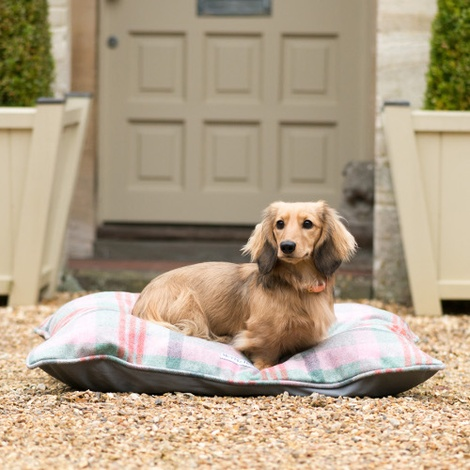 Macaroon Check Pillow Dog Bed 3