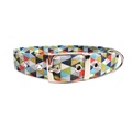 Oliver Buckle Dog Collar