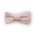 Teddy Maximus Pink Dog Bow Tie