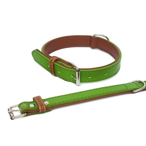 Lime Fusion Leather Dog Collar 2