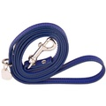Sea Blue and Silver Luxury Leather Lead
