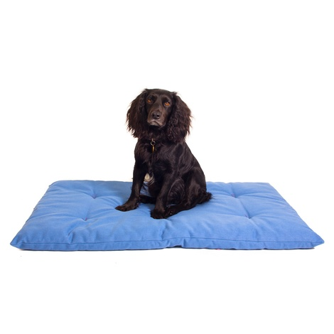 Plain Dog Roll Bed - Blue