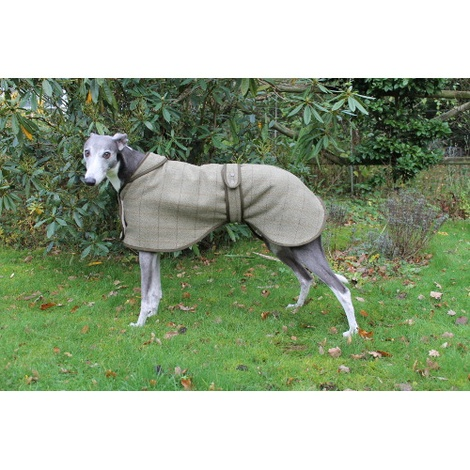 Tweed Greyhound Coat 3
