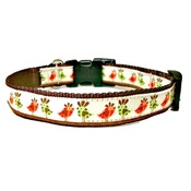 Woof and Meow - Funky Bird Small Dog Collar