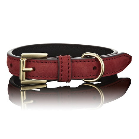 Limited Edition Luxe Red Dog Collar