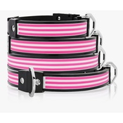 Cool Dog Club - Cool Dog K9 Striker MK1 Cabana Stripe Pink Dog Collar