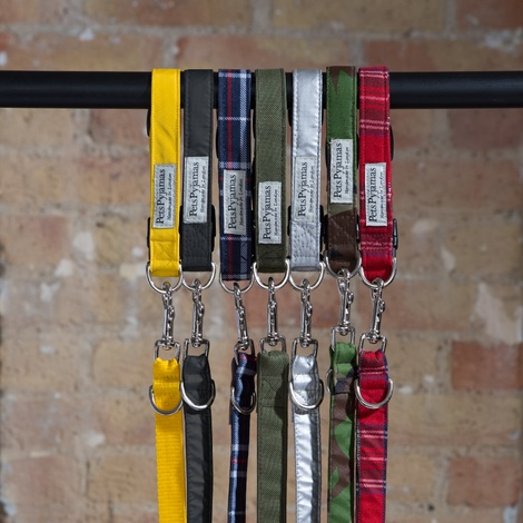 Pawditch Yellow Dog Collar, Lead & Coat Set  7