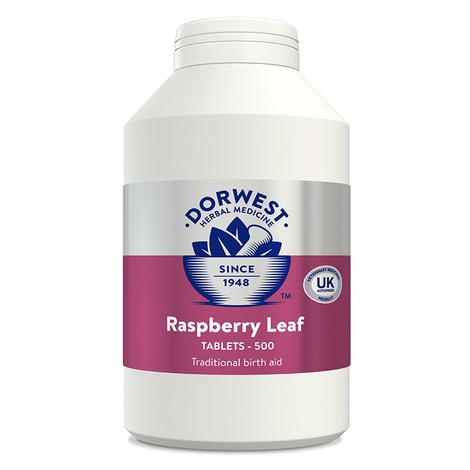 Raspberry Leaf Tablets for Dogs and Cats 3