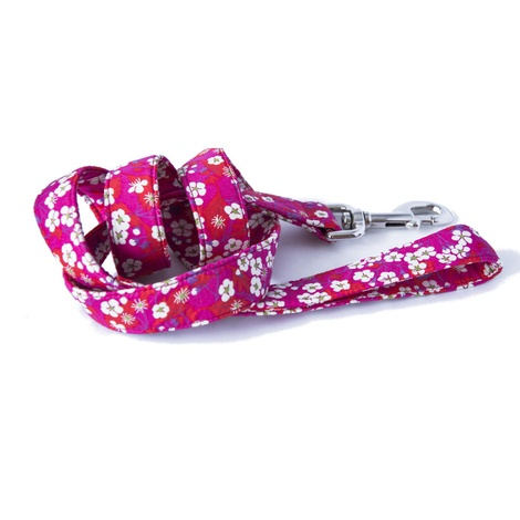 Sasha Liberty Print Dog Lead