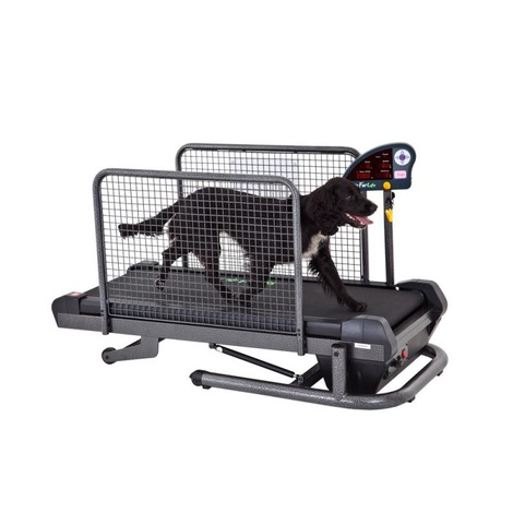 Small Treadmill for Dogs 2