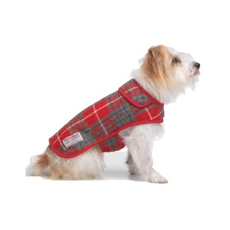 Hoxton Tartan Harris Tweed Dog Coat