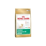 Royal Canin - Golden Retriever Jnr. 29 Dog Food