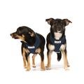 Airmesh Dog Harness – Navy 3