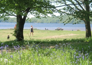 Loch Lomond Waterfront, Scotland  4
