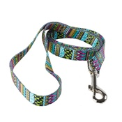 Yellow Dog - Festival Stripe Dog Lead