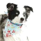 Pet Pooch Boutique - Blue Vintage Primrose Dog Bandana