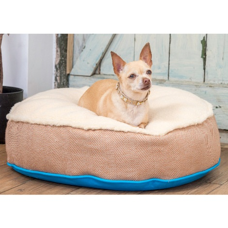 Cosy Top Soft Dog Bed - Blue 2