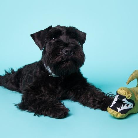 Aretha the Alligator Squeaky Plush Dog Toy 8