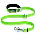 Slackline Dog Lead – Meadow Green