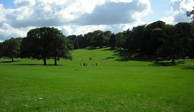 Warley Woods 2