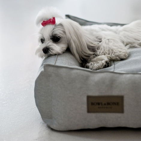 Urban Dog Bed - Grey 4