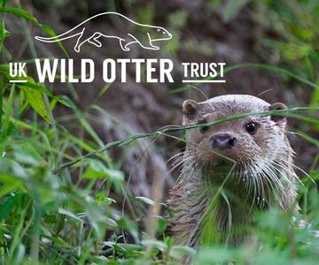The Wild Otter Trust