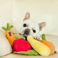 Plush Dog Toy - Apple 4