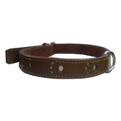 Bobby - Bobby Paws Dog Collar - Brown
