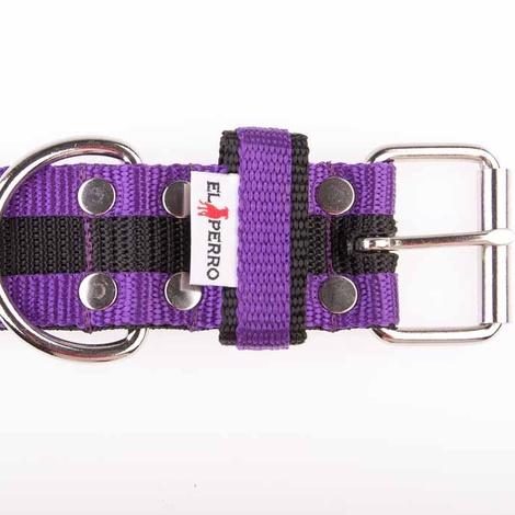 Juicy Strip Dog Collar - Purple 2