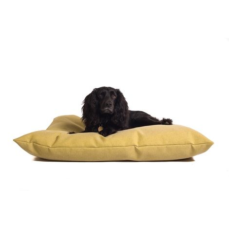 Classic Twist Dog Bed - Chartreuse