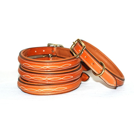 Embroidered Premium Leather Dog Collar in Tan