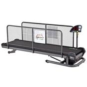 FitFurLife - Professional Treadmill