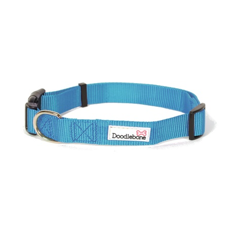 Bold Dog Collar – Cyan