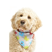 Pet Pooch Boutique - Shape Shifter Dog Bandana - Grey
