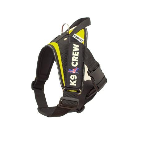 K9 CREW Neon Harness