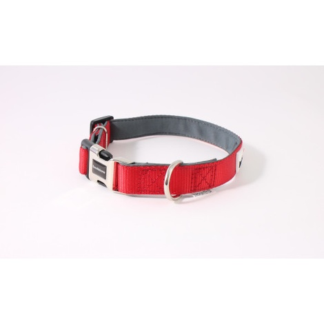 Bold Padded Collar - RED 2
