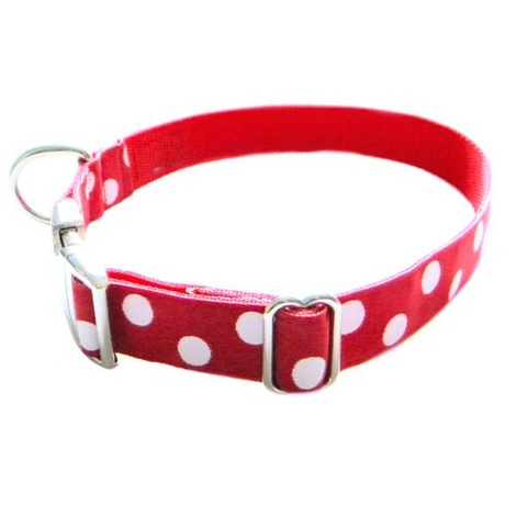White Dots on Red Dog Collar 2