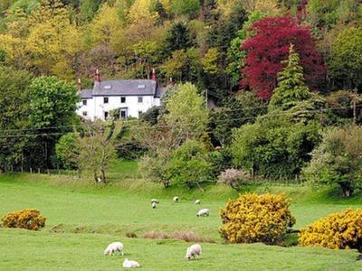 Melindwr, Ceredigion, Goginan