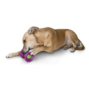 PetSafe - Busy Buddy™ Ultra Woofer Dog Toy