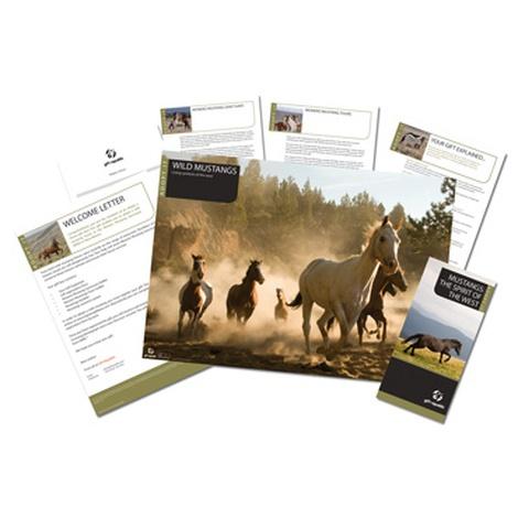 Adopt A Horse Gift Box 2