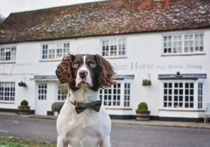The White Horse, Sussex 3