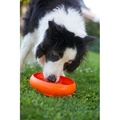 ThrowBowl Frisbee Water Bowl - Orange 3