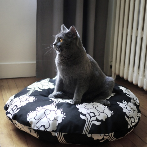Cushion and Bed - Alfons 3
