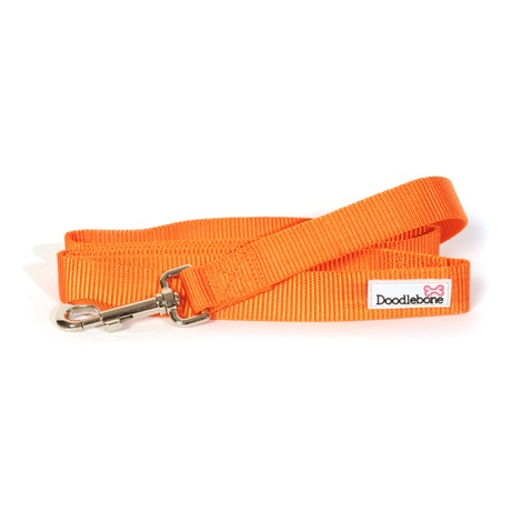 Bold Dog Lead – Orange