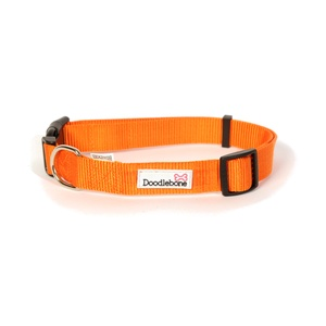 Bold Dog Collar – Orange