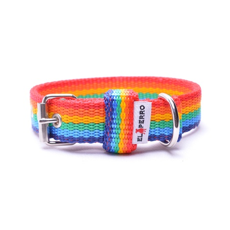 Double Dog Collar – Rainbow