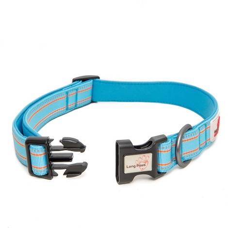 Comfort Padded Dog Collar – Blue 2