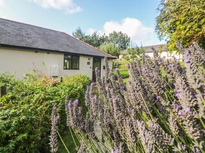 Hazel Cottage, Cornwall, Bude